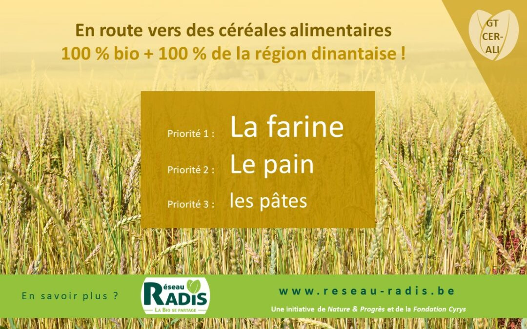 En route pour de la farine et du pain 100 % bio, 100 % de la région dinantaise !