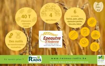 Mettre en place une filière farine et pain sur notre territoire : rencontre d'Epeautre d'Ardenne, une initiative inspirante !