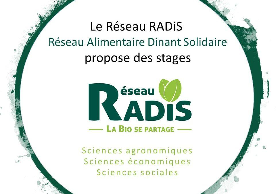 Le Réseau RADiS propose des sujets de stages étudiants