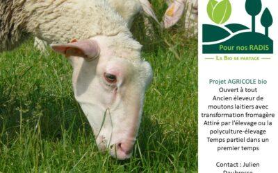 Résolu : Le projet agricole de Julien